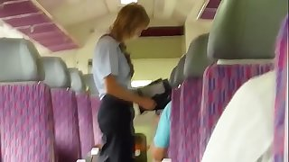 Lady getting fucked on Train in public !--- More at www.ImLivex.com